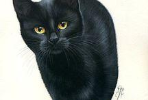 Każdy kot to dzieło sztuki!