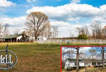 Farms For Sale Polk and Rutherford County / Farms for sale in Rutherfordton, North Carolina.