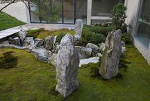 Solitéry - kameny v zahradě