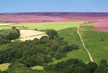 Beautiful and stunning North Yorkshire / This spectacular county offers wind swept moors, rolling beaches, quaint English villages and market towns; and the historic city of York is firmly on the tourist trail.Go visit!