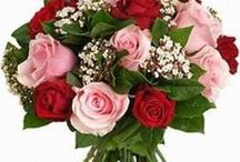 Purchase Colourful Roses Online and Send it to Anywhere in India / Buy flowers online with different colors and fragrance. Flowers have a language of their own and with FlowersCakesOnline.com you can easily send flowers to India. You can purchase a flowers vase, flowers bunches and flowers bouquets online according to your choice and budgets.