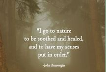 Religion - Nature