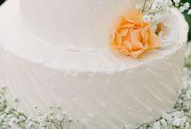 Wedding Sign Collection Photo shoot Inspiration