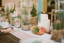 Wedding Ideas / Stuff for my wedding -- keeping it very specific!