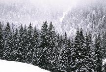 Cirmolo Gardenese - Grödner Zirbenkissen -  Val Gardena Stone pine pillows / Cuscini rilassanti con trucioli di legno di Cirmolo della Val Gardena Grödner Zirbenholzkissen Stone Pine Pillows from Val Gardena