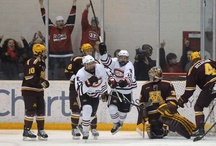 Minnesota at St. Cloud State hockey / by St. Cloud Times newspaper/online