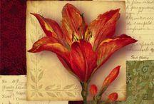 Flower prints for cards