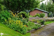 13640 McDonell Road, Anchorage, AK 99516 / Come home to a secure, quite, park-like setting!  This beautiful spruce log home is located on 2.5 acres. It is fenced and has a remote controlled gated entry. There are beautiful perennial gardens, lilacs, evergreen trees, and shrubs – nurtured by a master gardener! It has an open living area, main floor master bedroom, inviting study/bedroom, a large family room, and a solarium. There is also a detached, heated 660 square foot studio, perfect for an artist, hobbies, office, playhouse, etc.