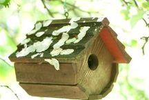 bird houses / by Helen LeBrett
