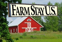 Farm Stays in the U.S. / Stay overnight on working farms, ranches, or vineyards in the United States... best vacations ever! / by FarmStayUS