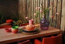 TUINEN / Tuinmetamorfoses, planten, bloemen en inspirerende tuintips die te zien zijn in Eigen Huis & Tuin