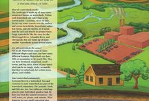 What is a Watershed? / What is a watershed? how big are they and what do they do?
