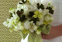 Irish Wedding Traditions / by Amanda Parke