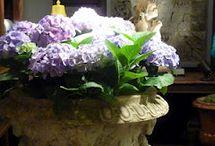 antique urns / antique and vintage garden urns