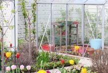 Gardening/Jardín