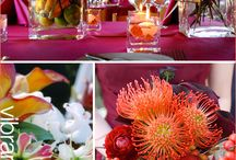 table settings / by Beth Hitchins