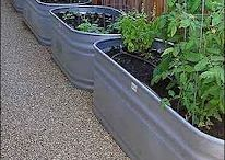 gardening / by Waynette Davis