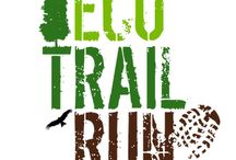 Eco Trail Run Azores 2015
