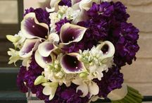 Flowers / by Christina Reynolds