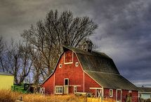 Nostalgia --- I Love Old Barns / by Patty Chapman