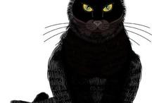 czarne kocisko