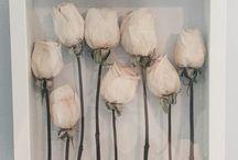 kurumuş çiçekler