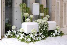 Fúnebre Fiéis