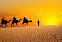 Egypt Travel / Travel in Egypt