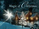 Christmas / by Joan Duffy