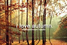 ⭐ # things i love about fall ⭐