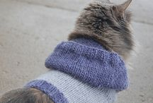 Knitting for pets !!!