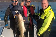 Fishing   Northern Norway   Tromso