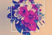 | Album Covers | / CD & Vinyl Album Covers
