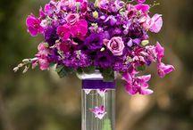 Idée mariage violet et fushia / Mariage