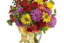 Roflora - Autumn Flower Collection