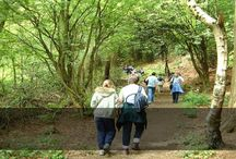 Tourism - 10th Witton Weavers Way Walking Festival (10th - 30th June 2013)