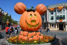 Disneyland - Halloween / The Happiest Place on Earth gets a little scarier during Halloween in a whimsical and fun way.