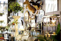 Interiors Styling - Botanical