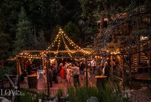Our Pine Rose Weddings / The results of our DJ and artistry at Pine Rose Weddings