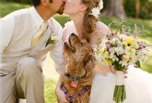 PETS AND WEDDINGS