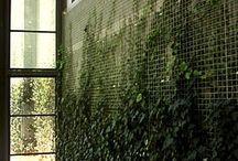 Wall Idea