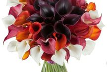 заказ цветов и  подарков онлайн / заказ и доставка цветов по России и СНГ