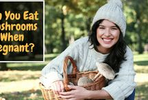 Can You Eat Mushrooms When Pregnant? Know the Shocking Truth