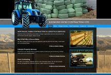 Carterton Web Design / Website designs for businesses in the Carterton region of the Wairarapa.