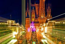Disney trip, 2015 / by Tracy Pohlmeyer Helmer