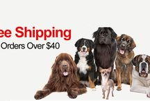 Best Deal Pet Supply Coupon Codes / Best Deal Pet Supply is UK based Veterinary practice works closely with our suppliers in an effort to be able to offer the lowest pricing on the products we sell. Best Deal Pet Supply business is organized with the customer in mind and we have earned an excellent reputation for helping our customers with substantial savings. Best Deal Pet Supply has been working since 1995.