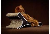 Griffoir pour chat en carton naturel - FELINE
