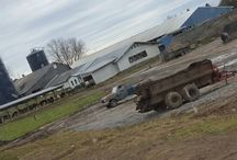 my life / Pictures of farm life and jus having fun