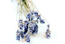 lawendowo / Lawenda, podobno jest kwiatem duszy. Bardzo, bardzo lubię.