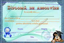 D nepersonalizate V-VIII / Diplome scolare nepersonalizate clasele V-VIII
